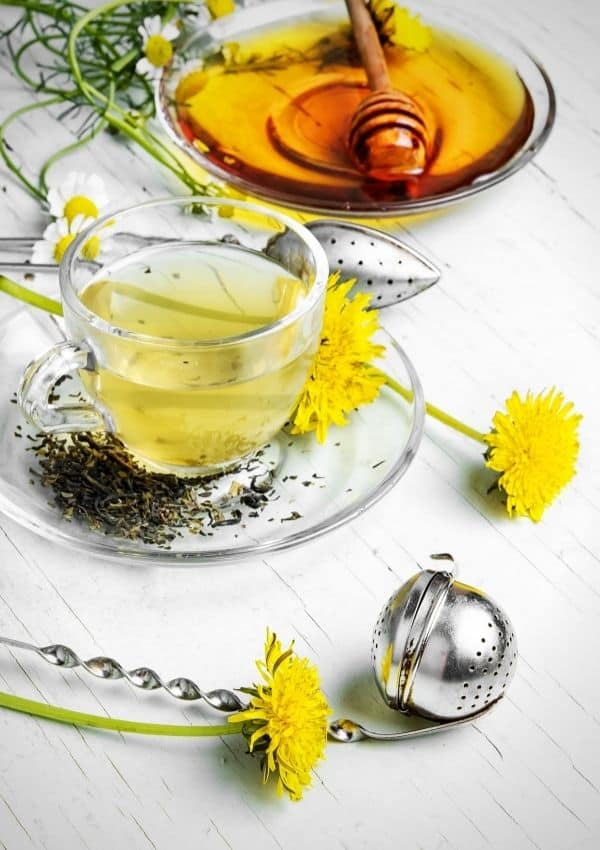 dandelion tea washing hair